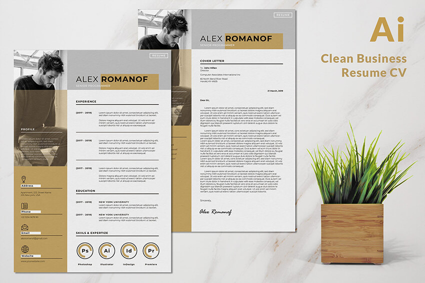 Professional Resume CV Clean  Minimal Design with Skills Example