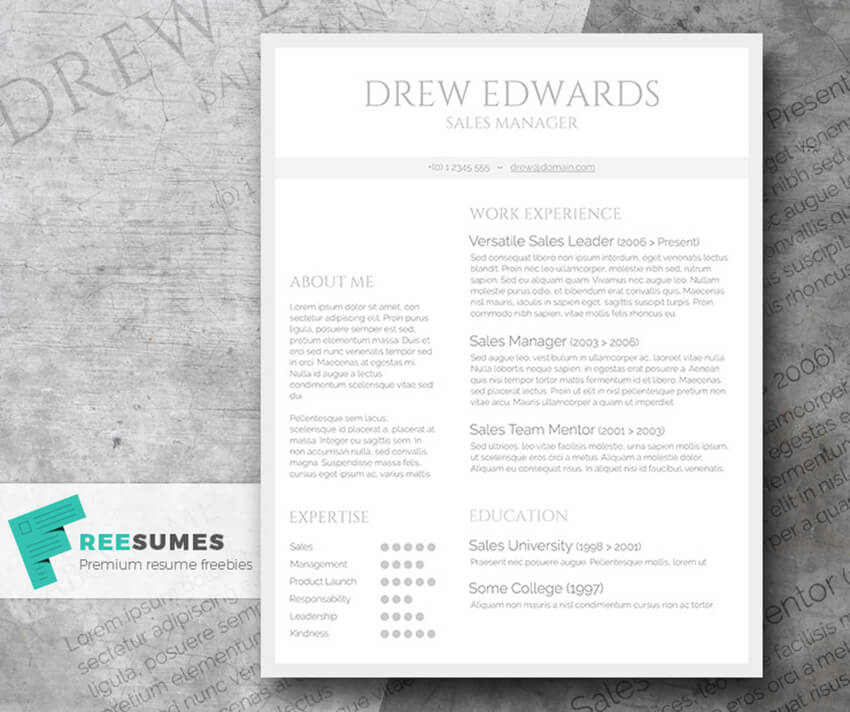 Free Straightforward Resume for Word