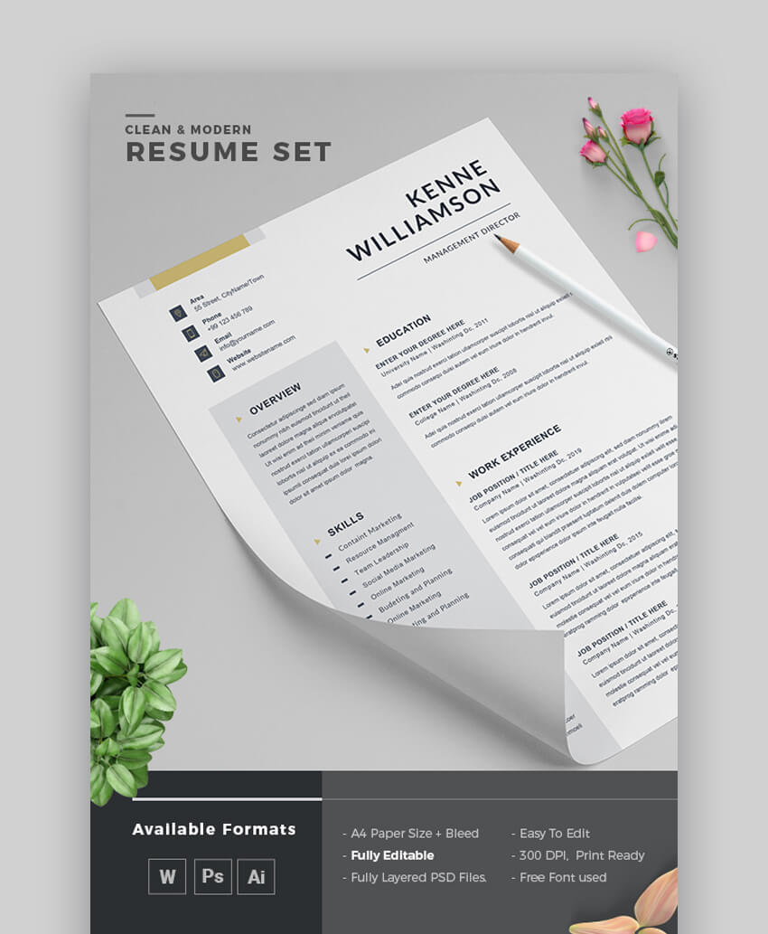 Modern Resume For PDF Export