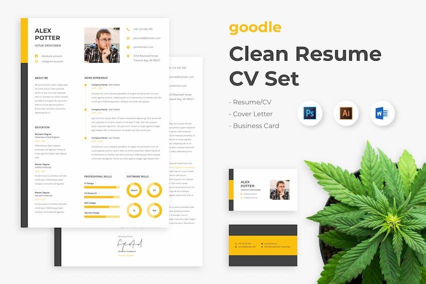 Clean Resume Set CV