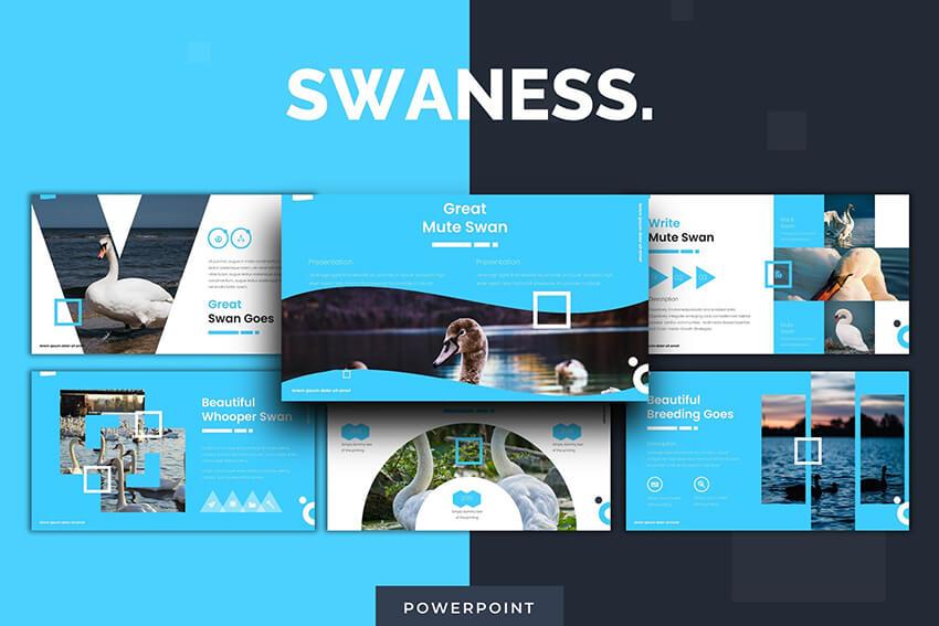 Swaness