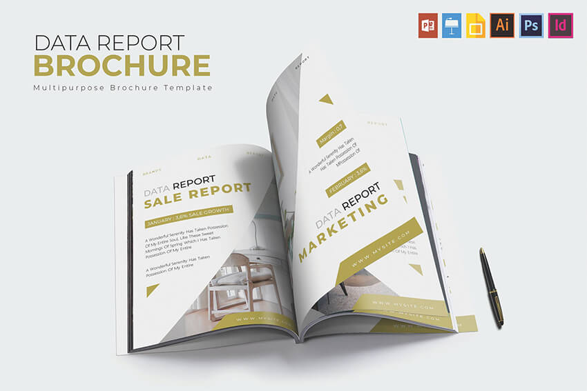 Data Report Brochure
