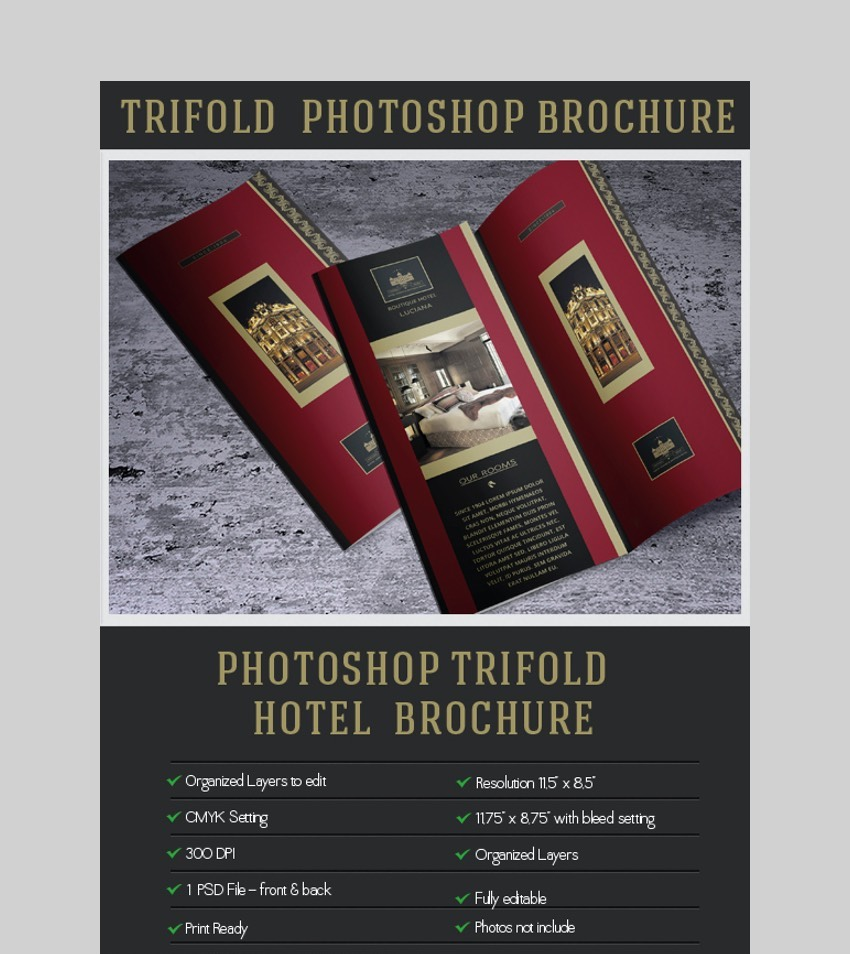 Elegant Brochure - Photoshop Brochure Template