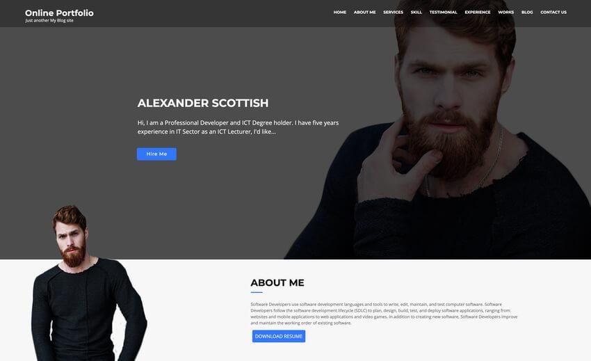 Online Portfolio - WordPress theme