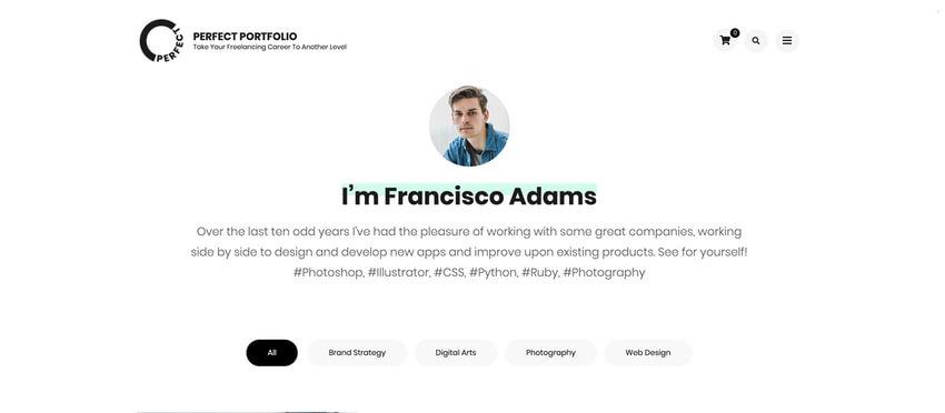 Perfect Portfolio - WordPress Theme