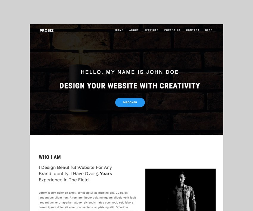 Probiz - Freelancer CV Resume WordPress Theme