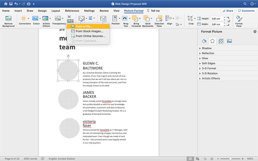 Adding custom images to the Web Design Proposal template