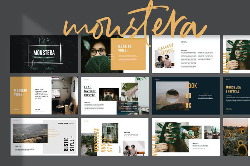 Monstera Template on Envato Elements
