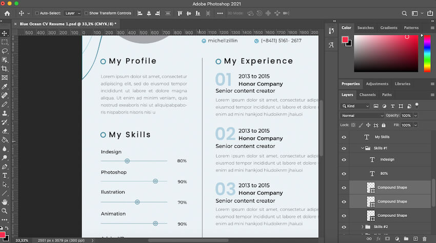 Customizing your skills in the Blue Ocean CV template