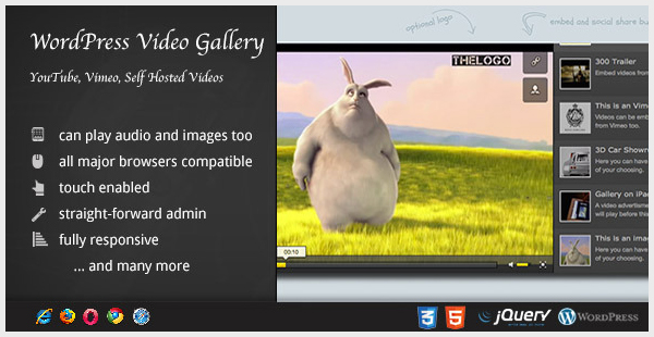 Video Gallery Wordpress Plugin w YouTube Vimeo
