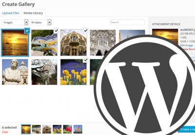 How to Find the Best WordPress Gallery Plugins for Images or Video