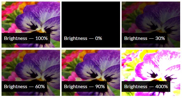 CSS Brightness Filter Effect