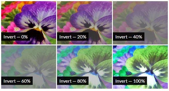 CSS Invert Filter Effect
