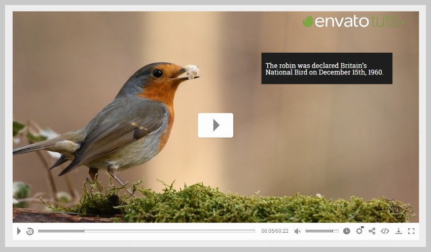 Video Player Annotations