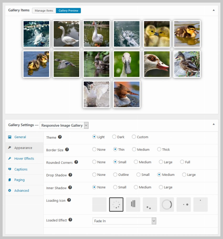 Image Gallery - Appearance Tab