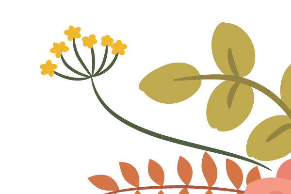 drawing petals of the yellow flower