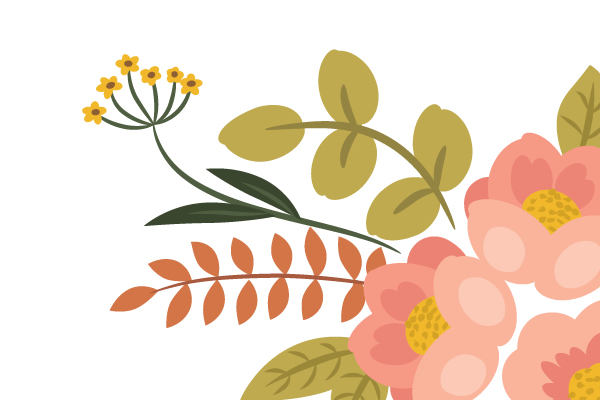 drawing leaves of the yellow flower