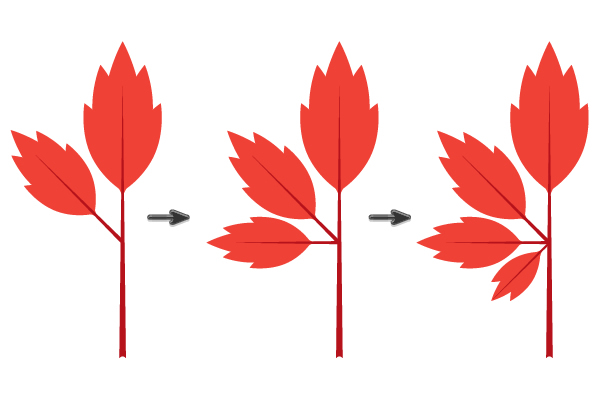 creating the maple leaf 4