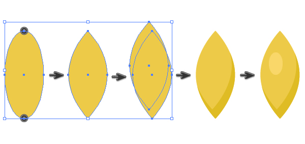 creating a grain of the spikelet