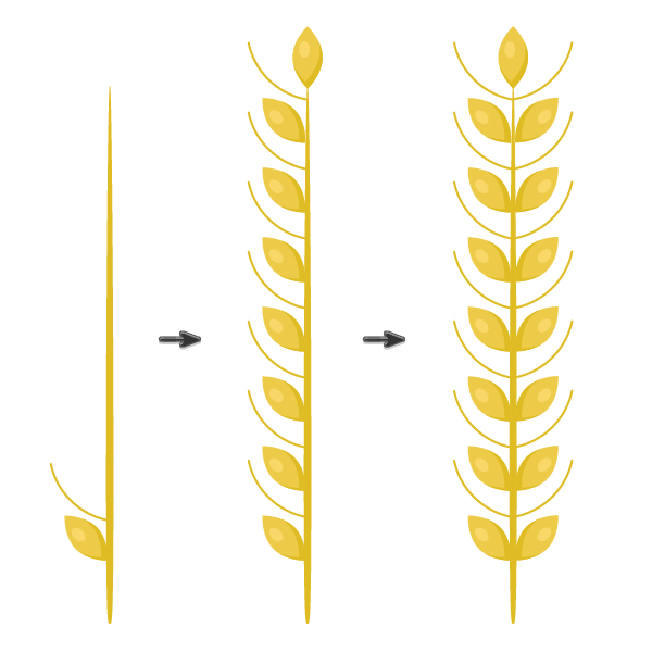 continuing creating the spikelet