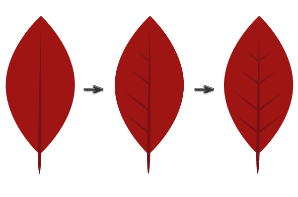 creating veins of the poinsettia