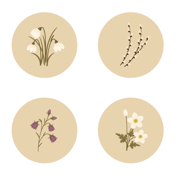 placing each flower on the circle background