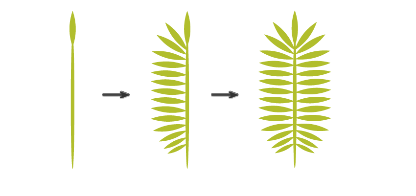 creating the palm leaf 2