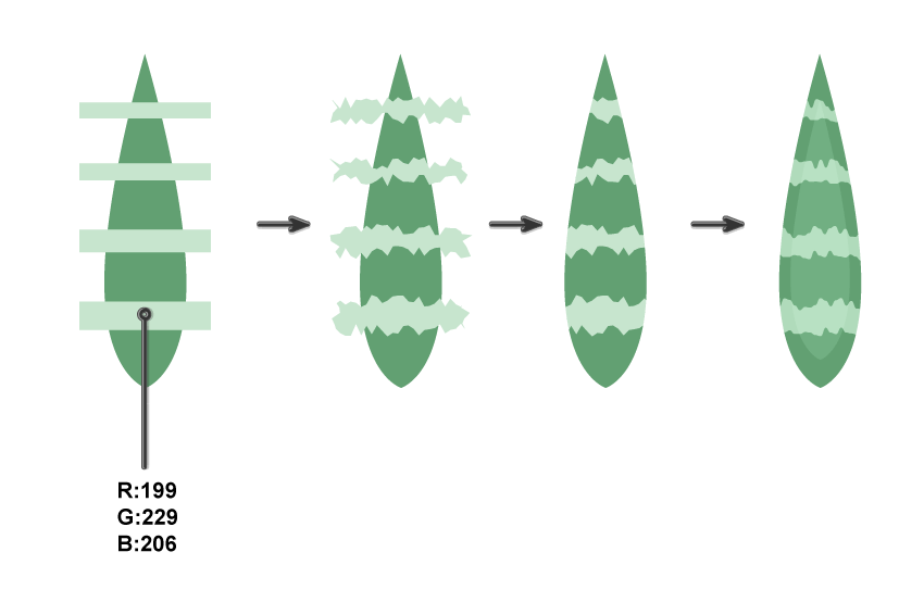 adding stripes to Howorthia Fasciata leaf