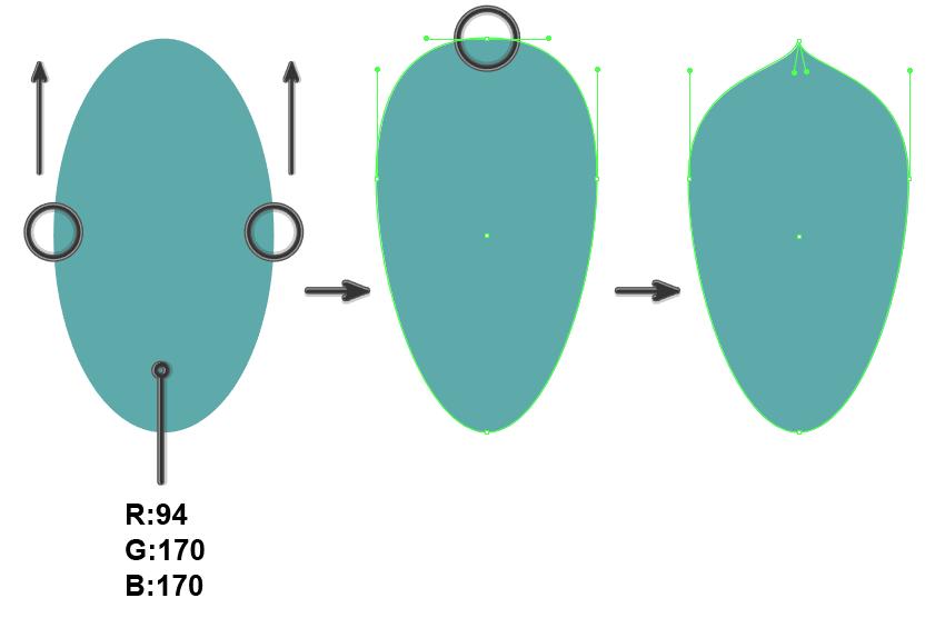 creating the leaf of Echeveria Succulent