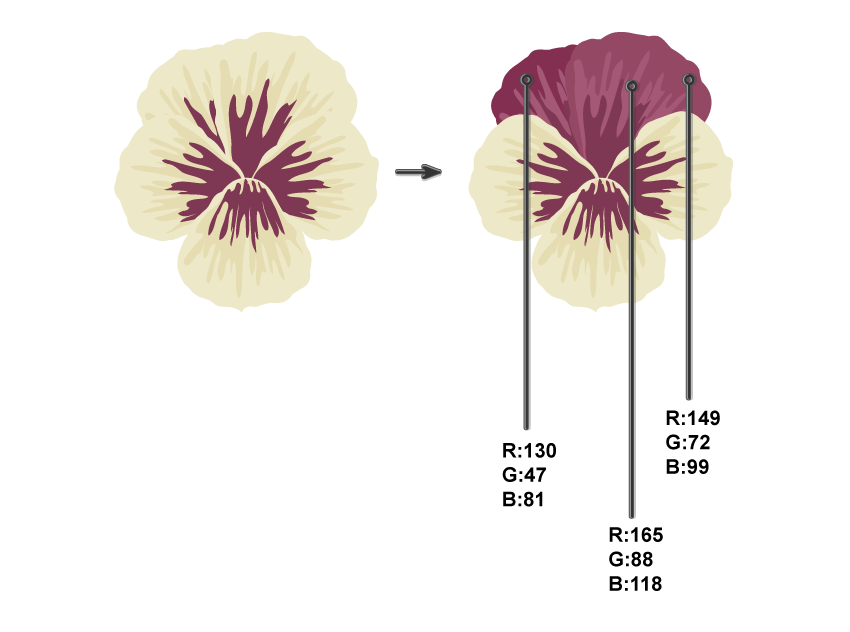 creating 4th and 5th petals