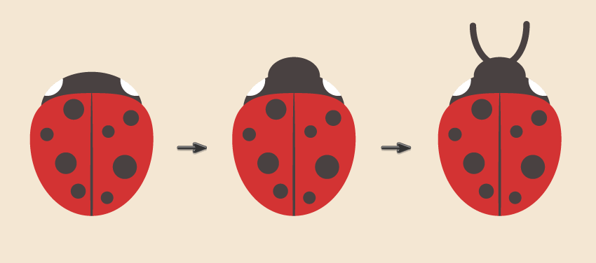 creating the ladybug head and antennas