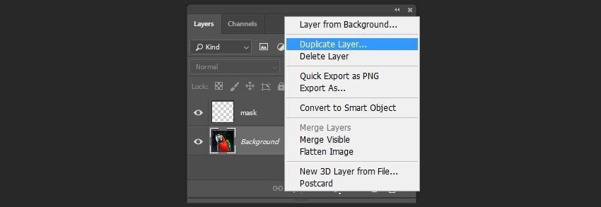 Creating a duplicate of the layer