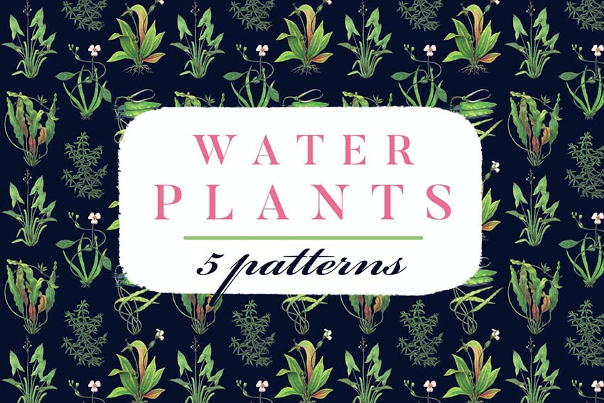 Water Plants Patterns