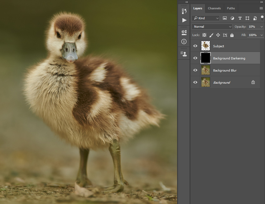 how to change the opacity of an image in photoshop
