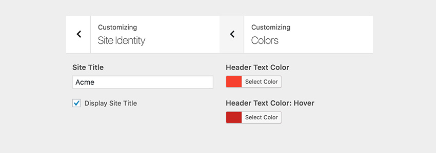 Input Checkbox and Color picker in the Customizer pane
