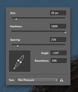 Adjusting brush parameters