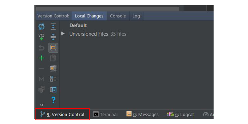 Version Control window