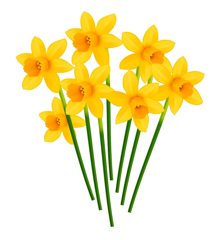 How to Create a Pot of Daffodils With Gradient Mesh in Adobe Illustrator
