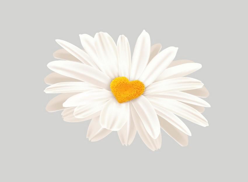 add to daisy