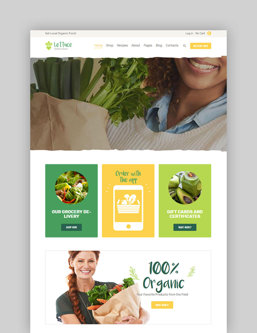 Lettuce  Organic Food  Eco Online Store Products WordPress Theme