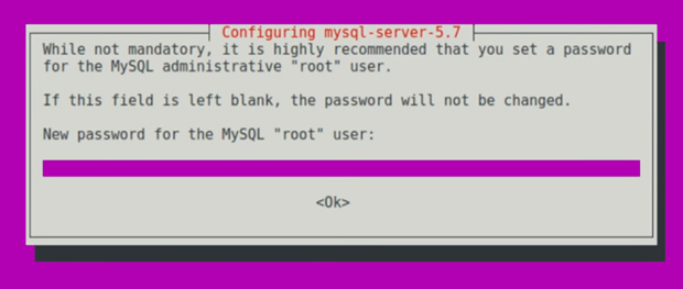 MySQL Password