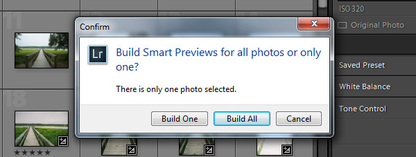 Build Smart Previews - All