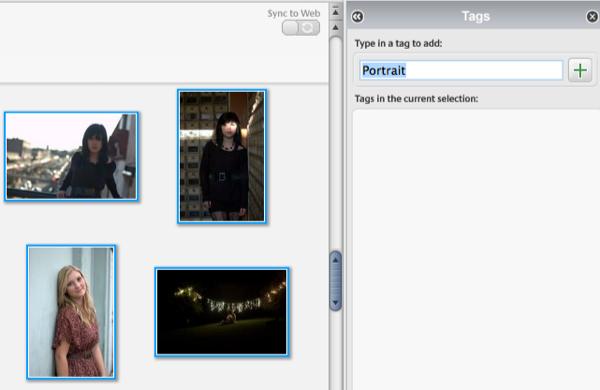 Picasa multi tagging