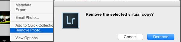 Remove Virtual Copy