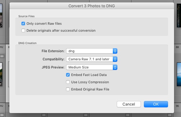 Convert to DNG Lightroom