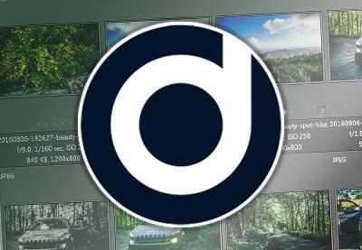 Daminion icon