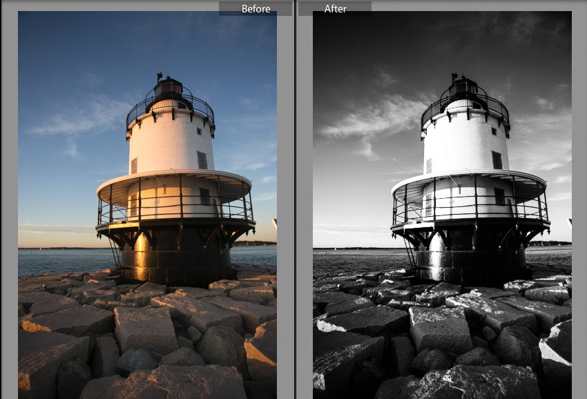 50 Free Black and White Presets for Adobe Photoshop Lightroom