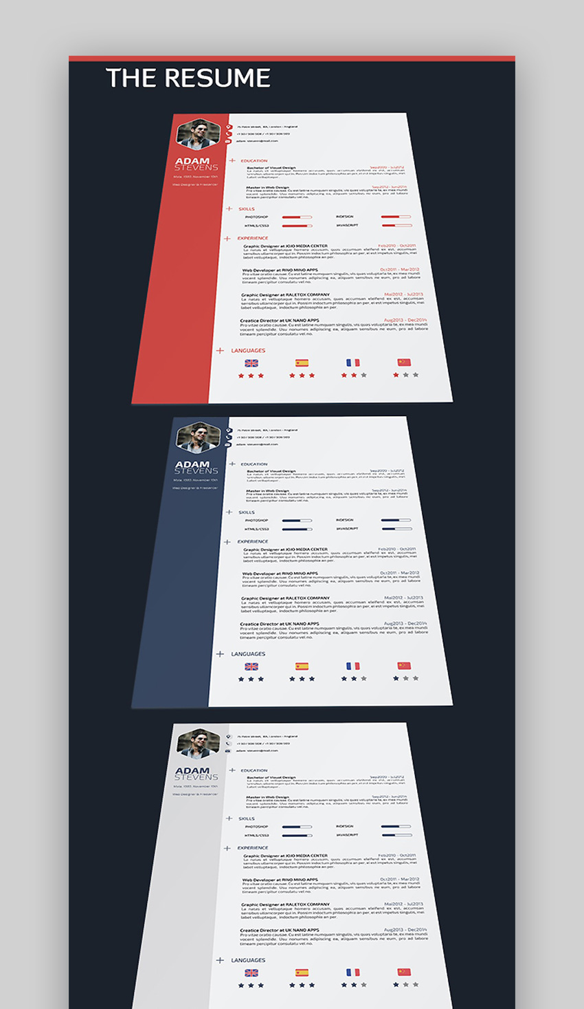 Professional Resume And Cv Template