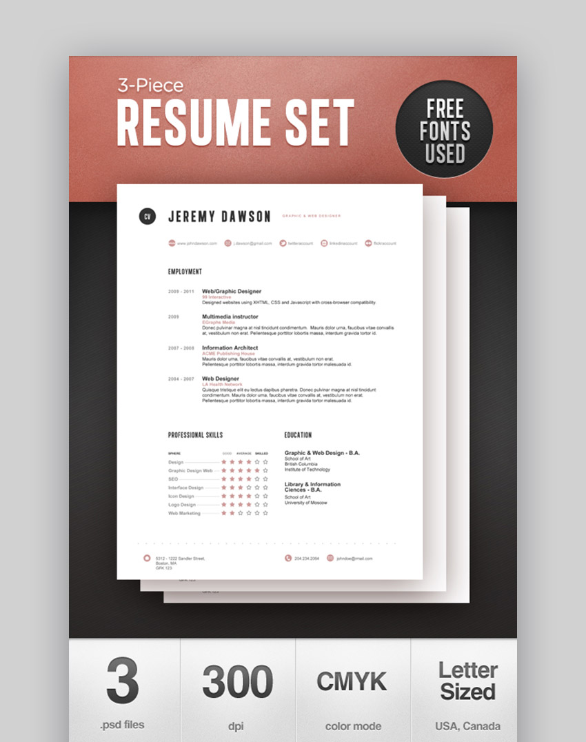 Stylish Resume with Visual Skills