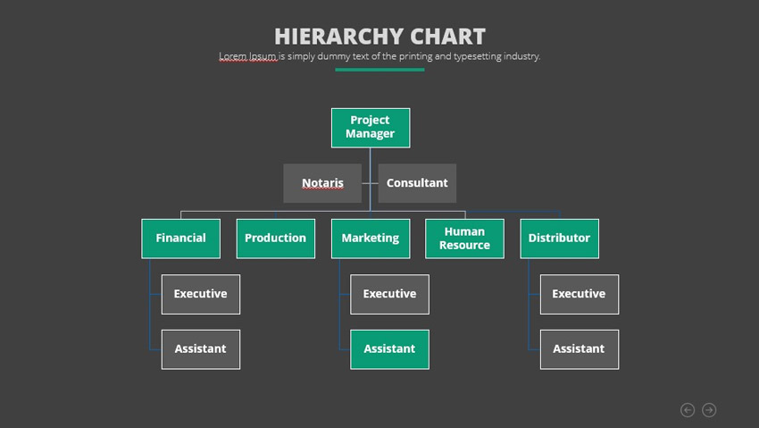 Hierarchy Infographic